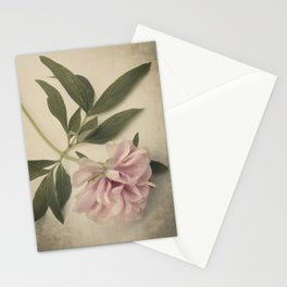 Scents of Spring - Pink Peony ii Stationery Cards
