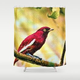 Red Pompadour Cotinga Portrait Painting by Jeanpaul Ferro Shower Curtain