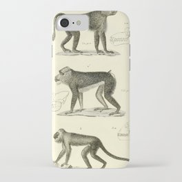 Vintage Animal Illustration - 1829 - Baboons, Howler Monkey iPhone Case