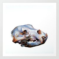 animal skull Art Prints featuring Animal Skull by teethbone (Tyler Snell)