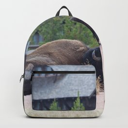 Buffalo in a Field with a Building in the background Backpack