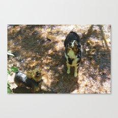 River Pups Canvas Print