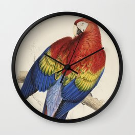 Vintage Illustration of a Macaw Parrot (1832) Wall Clock
