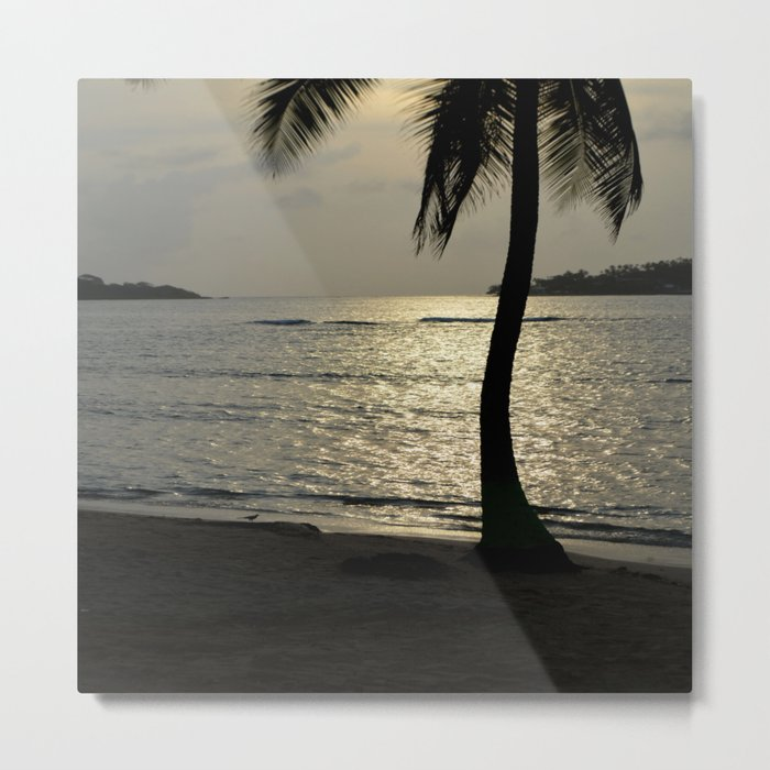 the sunset by the palm tree Metal Print