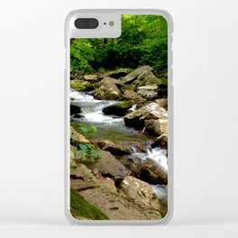 Ferns and Gnarled Tree - Little Stony Creek Clear iPhone Case