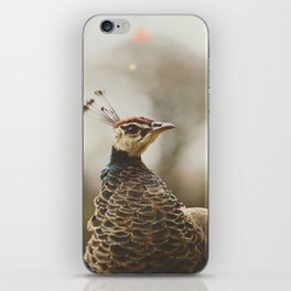 Little Miss Peahen iPhone Skin
