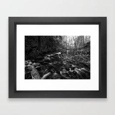 Oregon Stream in Black & White Framed Art Print
