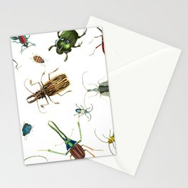 Bug Life - Beetles - Bugs - Insects - Colorful - Insect Pattern Stationery Cards