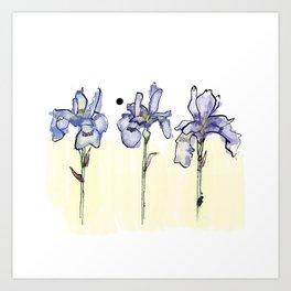 Irises Art Print
