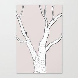 Birch Tree Illustration Canvas Print