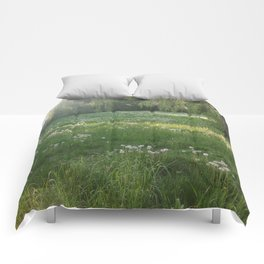 Lawn Wishes Comforters