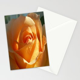 Peach Rose Photograph, Rose Photograph, Flower Lover, Gift for Mom Stationery Cards