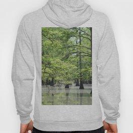 Cypress Trees in the Louisiana Swamp Hoody