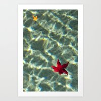 Autumn in the Water Art Print