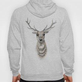 Proud Stag - Reindeer - Deer Hoody