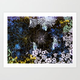 Midnight Garden Art Print