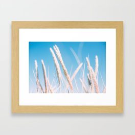 Blue Summer Framed Art Print