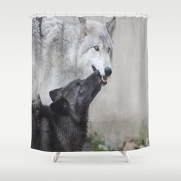 Submitting to the Alpha Shower Curtain