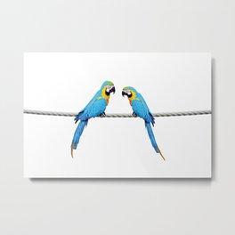 Macaw Bird sitting on rope white Metal Print