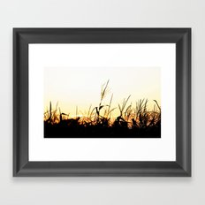 Maizal Framed Art Print