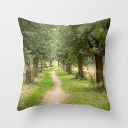 Willow Lane II Throw Pillow