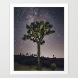 Joshua Tree Against the Milky Way Art Print