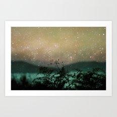 Night Sky Flowers Art Print