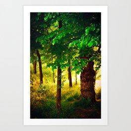 Magic light Art Print