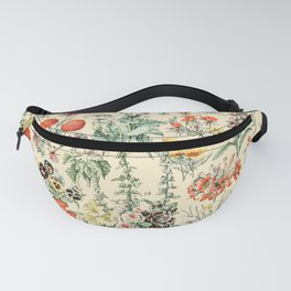 Wildflower Diagram // Fleurs II by Adolphe Millot 19th Century Artsy Floral Science Textbook Artwork Fanny Pack