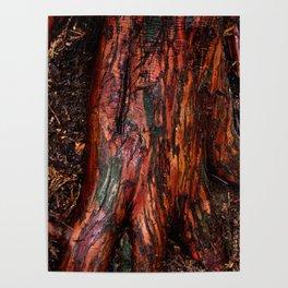 bark red Poster
