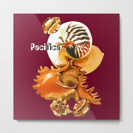 Pacifica 1 - South Pacific Seashells Metal Print