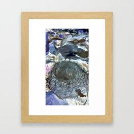 Fallen Birds Nest In Negative Framed Art Print