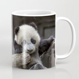 Baby panda climb a tree Coffee Mug