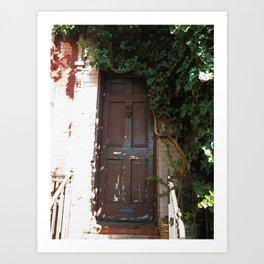 Georgetown Brick and Vine Art Print
