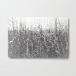 Autumn prairie Metal Print