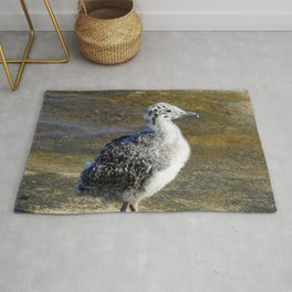 Ring-billed Gull Chick Rug