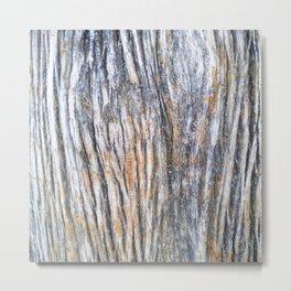Wood Grain Metal Print