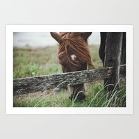 pony Art Prints featuring pony by Vee Vee