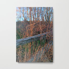 Straw Pi over fence Metal Print