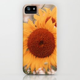 4 sunflowers nostalgia iPhone Case