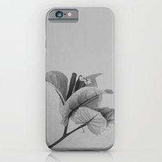 Forgotten No. 1 iPhone 6s Slim Case