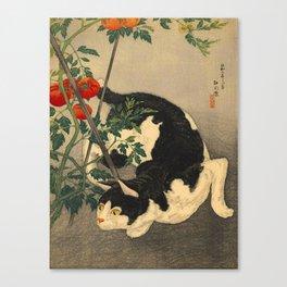 Shotei Takahashi Black & White Cat Tomato Garden Japanese Woodblock Print Canvas Print