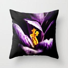 Dark Violet Or Purple Color Crocus Flower, Shining Yellow Stigmas Throw Pillow