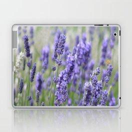 Lavender in field Laptop & iPad Skin