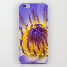 The Lotus Flower iPhone & iPod Skin