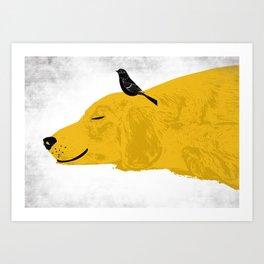 Golden Retriever sleeping Art Print