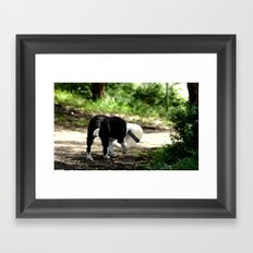 Life can be Cruel! Framed Art Print