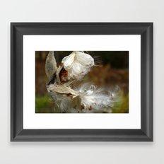 Whispy Framed Art Print