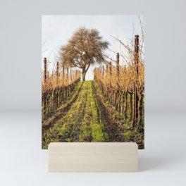 Paso Robles: Booker Vineyard Mini Art Print