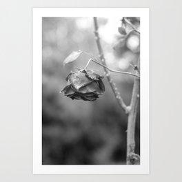 Folded in Art Print